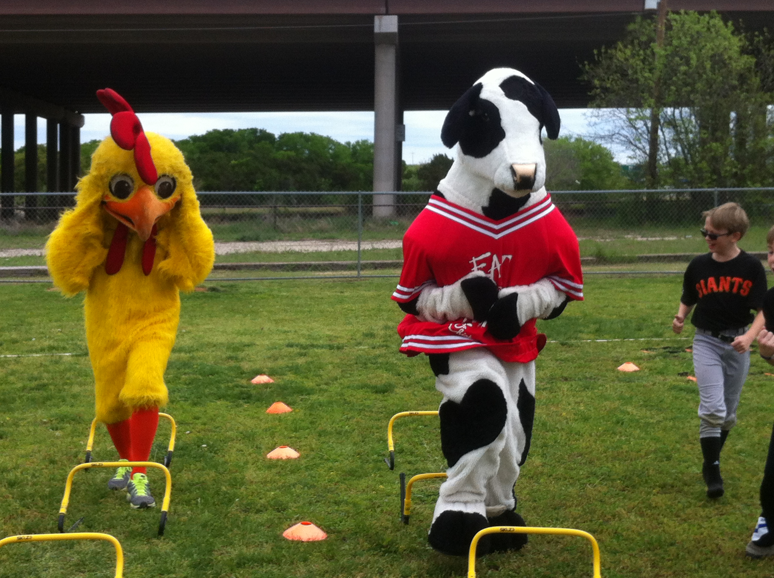 Pluckers Mascot  & ChickFilA race in Camp Gladiator Obstacle Course