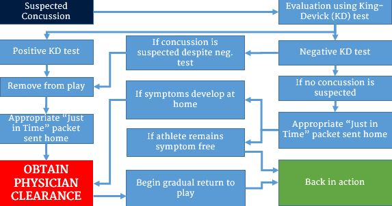 Concussion management flow chart