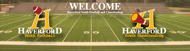 Haverford Youth Football & Cheerleading, Football, Goal, Field