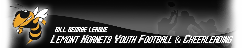 Lemont Hornets Youth Football, Football, Goal, Field