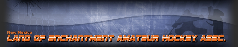 Land of Enchantment Amateur Hockey Assc., Hockey, Goal, Rink