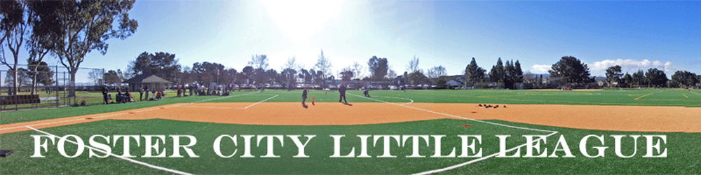 Foster City Little League, Baseball, Run, Field