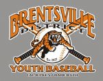 Brentsville District Youth Baseball, Baseball