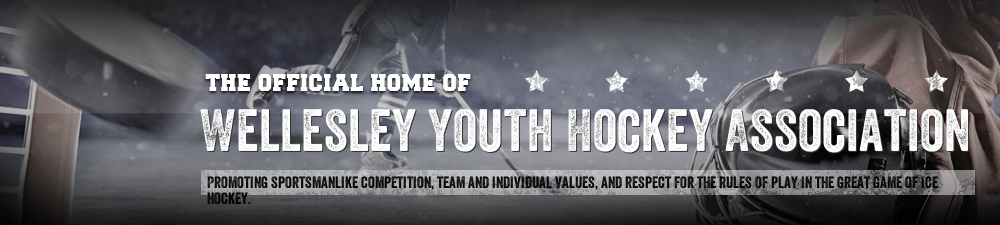 Wellesley Youth Hockey Association, Hockey, Goal, Rink