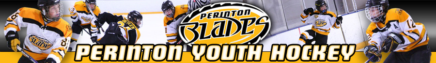 Perinton Youth Hockey, Hockey, Goal, Rink