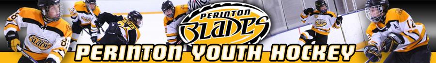 Perinton Youth Hockey, Hockey, Goal, Rink