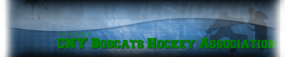 CNY Bobcats Hockey Association, Hockey, Goal, Rink