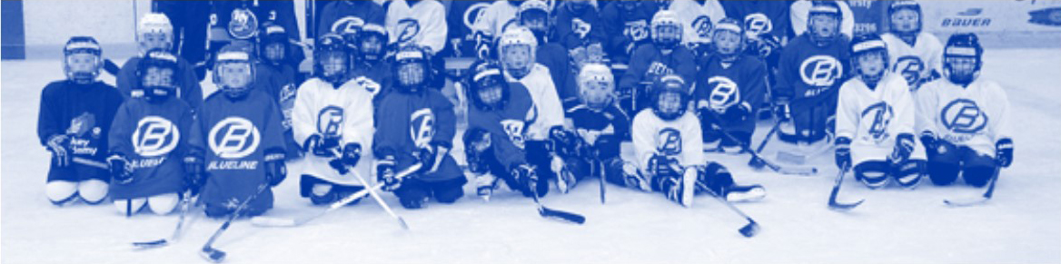 DYHA MINI & MIGHTY MITES, Hockey, Goal, Rink