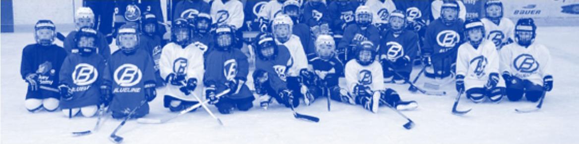 DYHA MINI & MIGHTY MITES, Hockey, Goal, Rink