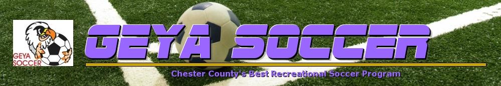 GEYA Soccer, Soccer, Goal, Field