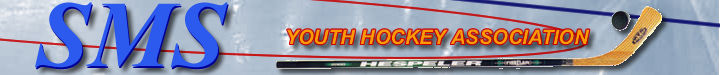 Sudbury Maynard Stow Youth Hockey Association, Hockey, Goal, Rink