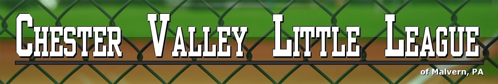 Chester Valley Little League, Baseball, Run, Field