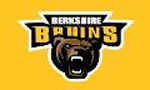 Berkshire Bruins Youth Hockey, Hockey