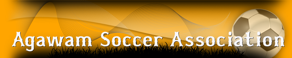Agawam Soccer Association, Soccer, Goal, Field