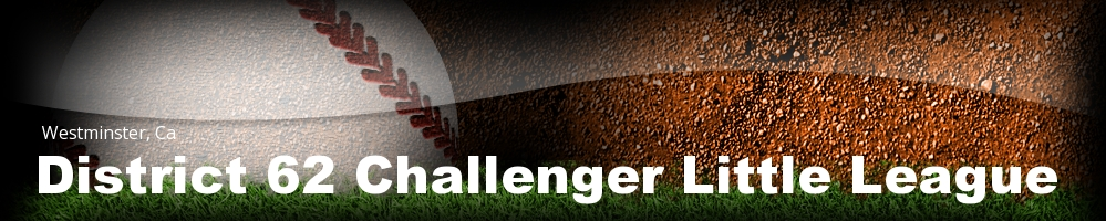 District 62 Challenger Little League, Baseball, Run, Field
