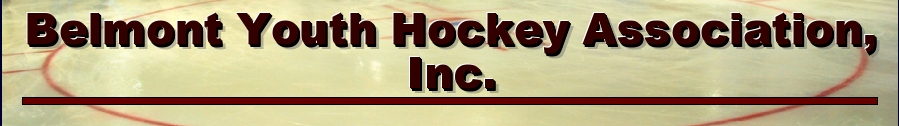 Belmont Youth Hockey Association, Inc., Youth Hockey, Goal, Rink