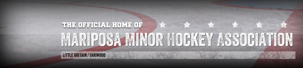 Mariposa Minor Hockey Association, Hockey, Goal, Rink