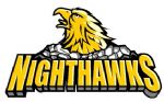 CT Nighthawks, Hockey