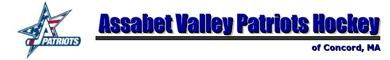 Assabet Valley Patriots Hockey, Hockey, Goal, Rink