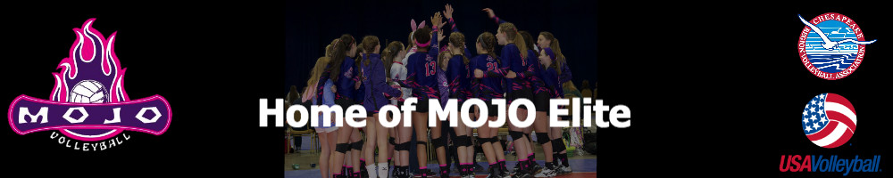 MOJO Volleyball Academy, Volleyball, Goal, Facility