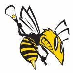 Florham Park Youth Lacrosse, Lacrosse