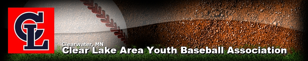 Clear Lake Area Youth Baseball Association, Baseball, Run, Field