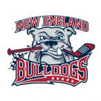 New England Bulldogs, Hockey