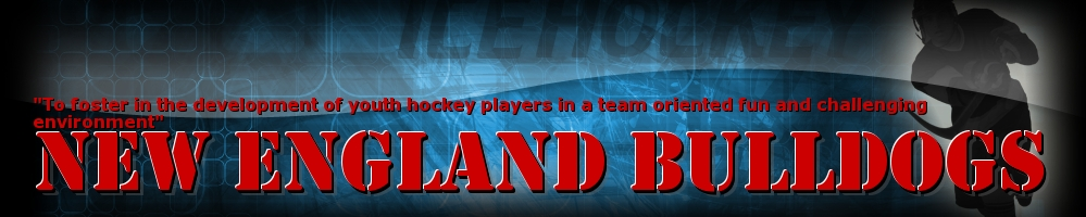 New England Bulldogs, Hockey, Goal, Rink