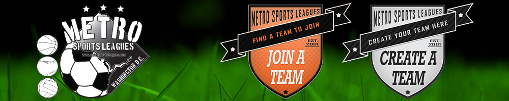 Metro Sports Leagues, Soccer, Softball, Volleyball, Goal, Field or Gym