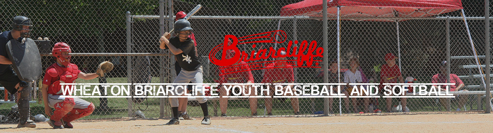 Wheaton Briarcliffe Youth Baseball and Softball, Baseball, Run, Field