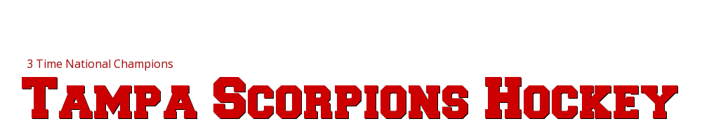 Tampa Scorpions Hockey, Hockey, Goal, Rink