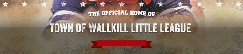 Town of Wallkill Little League , Baseball , Run, Field