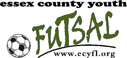 Essex County Youth Futsal League, Soccer, Goal, Court
