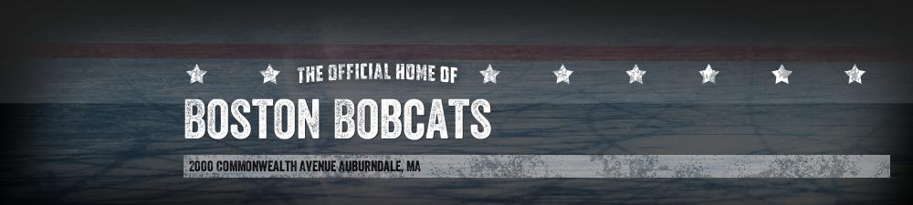 Boston Bobcats, Hockey, Goal, Rink