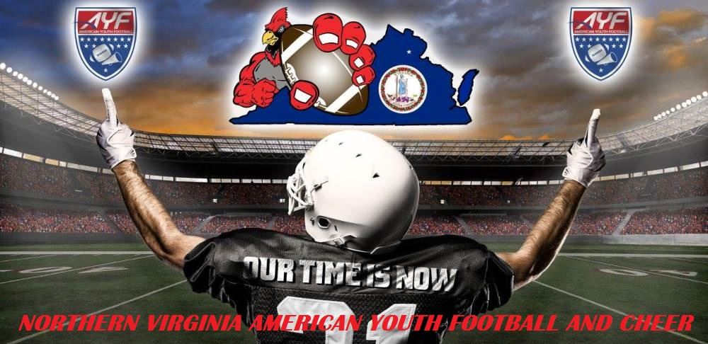 Northern Virginia American Youth Football Conference, Football, Goal, Field