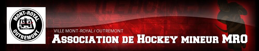 MRO Minor Hockey Association, Hockey, Goal, Rink