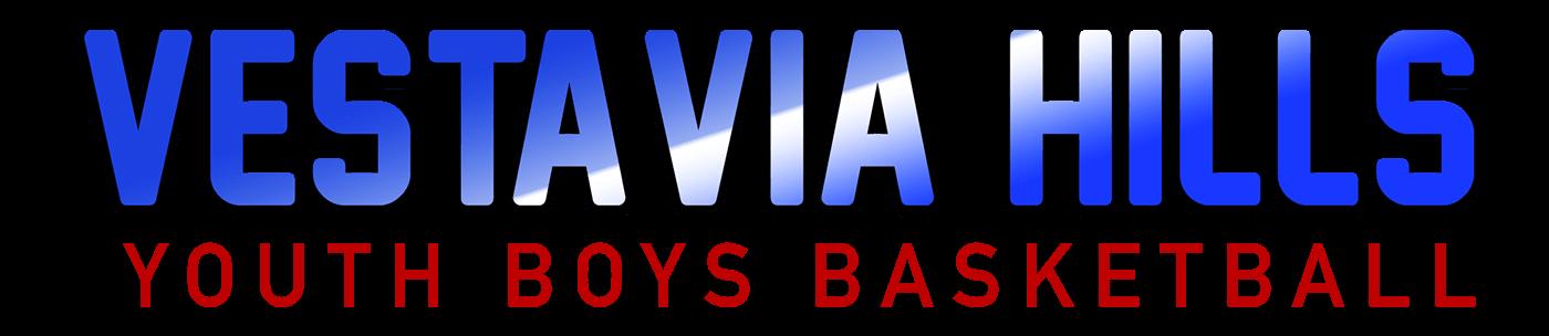 Vestavia Hills Youth Boys Basketball, Basketball, basket, Court
