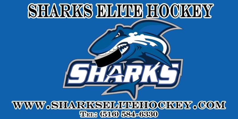 Sharks Elite Hockey Club, Hockey, Goal, Iceland