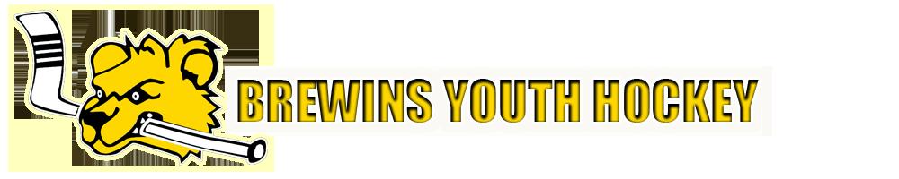 Brewins Youth Hockey, Hockey, Goal, Rink