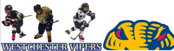 Westchester Vipers Hockey Association Westchester Wild Girls Hockey , Hockey, Score, Rink