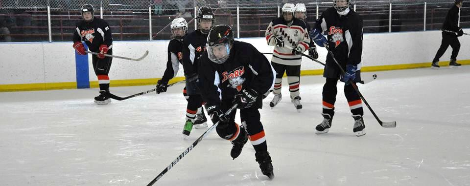 Southern Connecticut Storm Special Hockey, Inc., Special Hockey, Goal, Rink