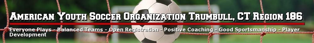 American Youth Soccer Organization Region 186