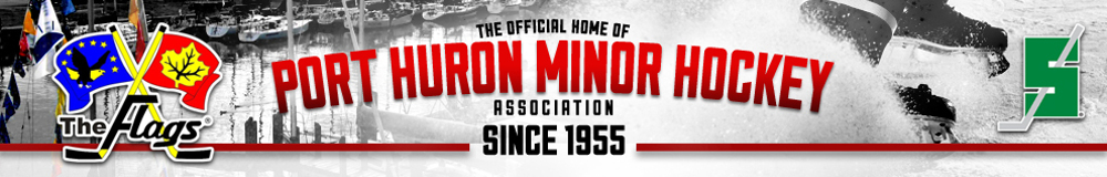 Port Huron Minor Hockey Association, Hockey, Goal, Rink