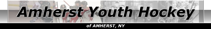Amherst Youth Hockey, Hockey, Goal, Rink
