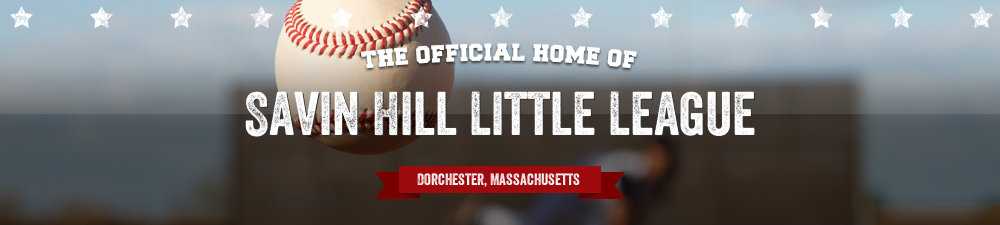 Savin Hill Little League, Baseball, Run, McConnell Park