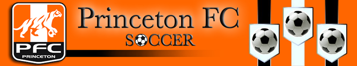 Princeton FC Soccer, Soccer, Goal, Field