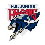 New England Jr. Falcons, Hockey