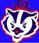 Bridgewater Badgers Cheerleaders, Badgers Cheerleading