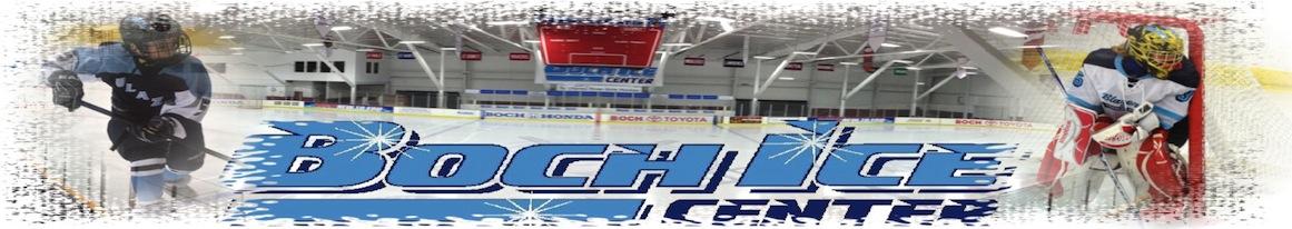 Boch Blazers , Hockey, Goal, Rink