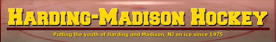 Harding-Madison Ice Hockey Association, Hockey, Goal, Rink